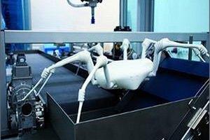Ученые создали высокотехнологичного робота-паука