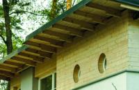 Експерти розповіли, як софіти допоможуть захистити дах від руйнувань