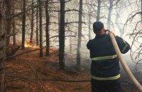 В Николаевской области горит 50 гектаров леса