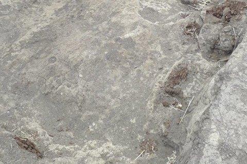 У Полтавській області на розкопках знайшли скіфське золото і зброю