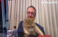 Кіт Геращенка вліз у кадр під час прямого включення