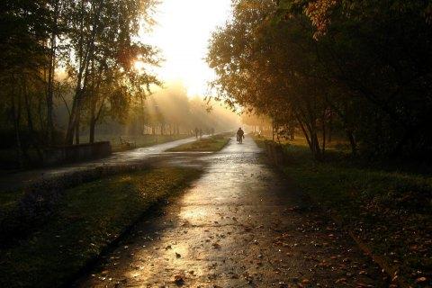 Завтра в Киеве обещают потепление и дождь