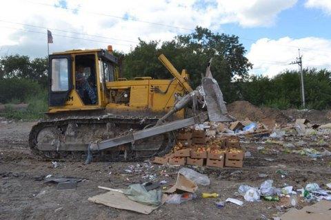 У Росії за два роки знищили 17 тисяч тонн іноземних продуктів
