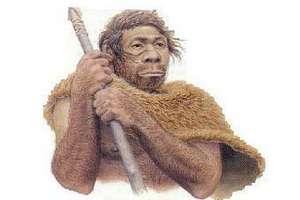 Гибриды неандертальцев и людей оказались большой редкостью