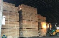 На Житомирщині викрили схему незаконного експорту деревини в Азію на 4 млн грн