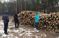 В Житомирской области четырех лесничих подозревают в незаконной вырубке леса на 6 млн гривен