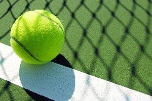 Серена Уильямс поднялась на 172-е место в мировом рейтинге