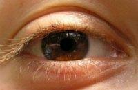 Ученые вырастили сетчатку человеческого глаза из стволовых клеток
