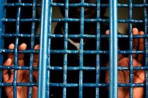 """На Полтавщині зі 102 засуджених сотня підтримали """"регіоналів"""""""