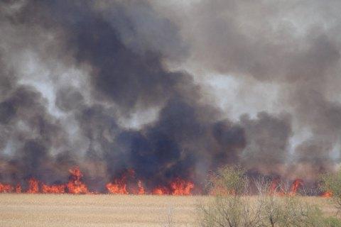 Убийство, поджог и служебная халатность: полиция расследует обстоятельства пожара в одесской психбольнице