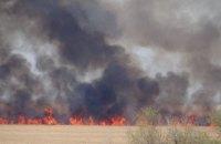 В Одесской области горит национальный природный парк