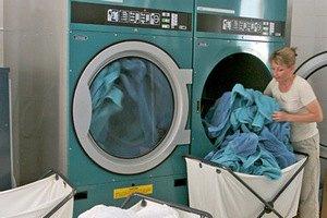 """Кошка выжила после двухчасового """"мытья"""" в стиральной машине"""