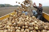 Украина вошла в тройку крупнейших экспортеров сельхозпродукции в ЕС