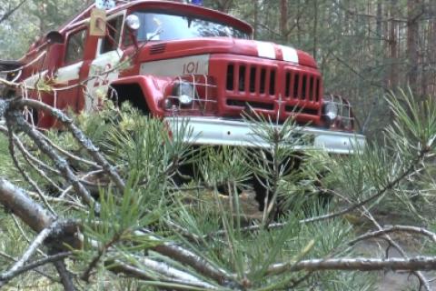 Рятувальники продовжують ліквідацію загорянь у Чорнобильській зоні відчуження