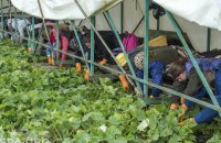 Украина и Болгария намерены подписать договор о трудовой миграции
