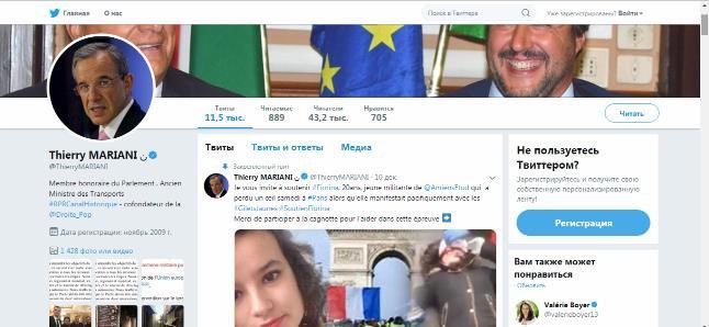 Скрин-шот страницы твиттера Т.Мариани, в котором он распространяет информацию о девочке - манифестанте, которая потеряла глаза