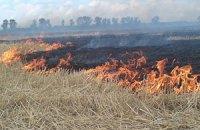 В Киеве в шести местах горит трава
