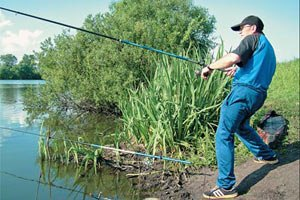 Плату за рыбалку введут не ранее 2017 года