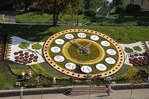 На квітковий годинник на Майдані пішло 185 тисяч квітів