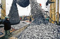Україна втрачає з Кримом дві третини свого вилову риби
