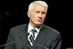 Генсек Ради Європи закликав Литвина поважати геїв