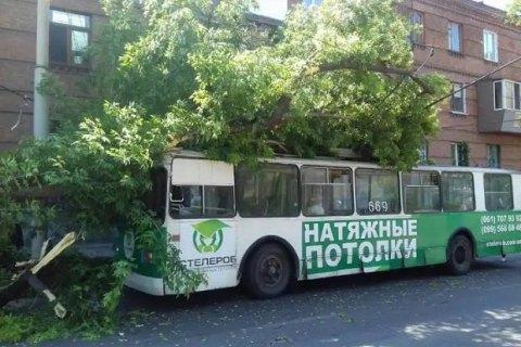 У Запоріжжі на тролейбус із пасажирами впало дерево