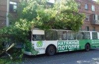 В Запорожье на троллейбус с пассажирами упало дерево