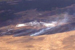 Площа лісових пожеж у Сибіру за добу збільшилася більш ніж у півтора разу
