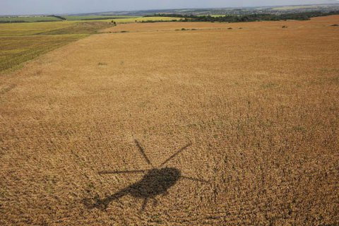 Ukraine's Agrarian Ministry reports record grain yield