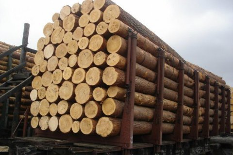 Ukraine president vetoes bill on wood smuggling prevention