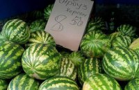 Kherson watermelons may be patented