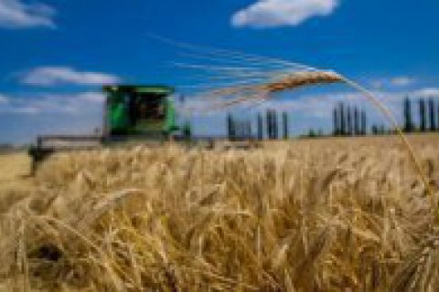 Over 86% of Ukrainians oppose foreigners' access to farmland market - survey
