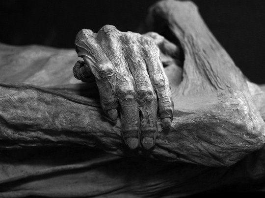 Томас Кастелацо, «Фрагмент мумии»