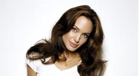 Анджелина Джоли снимется в экранизации романа Джеймса Скотта