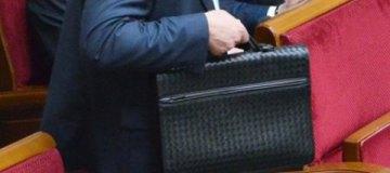 Нардеп коалиции носит в Раду портфель почти за $3 тыс.