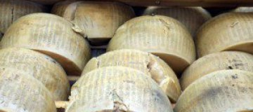 Американский пенсионер нашел в холодильнике 40-летний сыр
