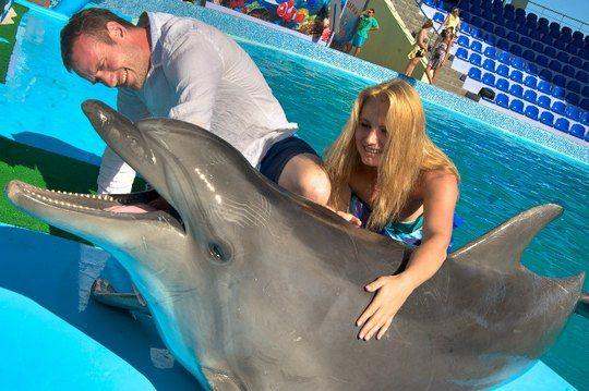 Принц Романов и Лена Ряснова наблюдали за шоу дельфинов