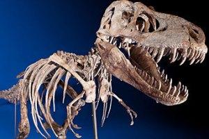 Скелет динозавра ушел с молотка за $1 млн