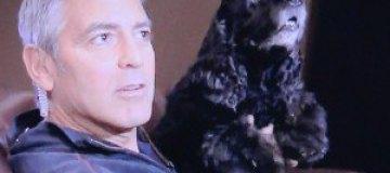 Ди Каприо досталось от Джорджа Клуни