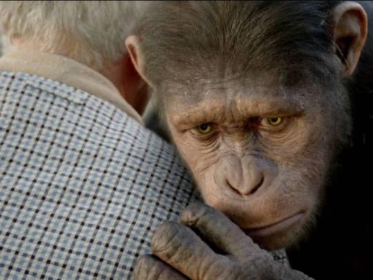 """Картина """"Восстание планеты обезьян"""" получила награду за лучшую анимацию персонажей в фильме с живыми актерами"""