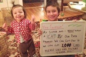 Пользователи Facebook помогли детям выпросить у отца кошку