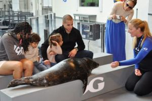Дженнифер Лопес сводила любовника и детей в аквариум