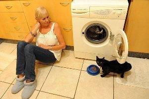 Черная кошка чудом выжила после стирки в машинке
