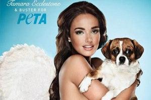 Тамара Экклстоун потратила $98 млн на SPA для собачек