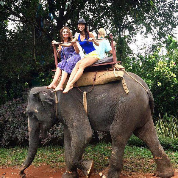 "Слон-""такси"" впечатлил девушку"