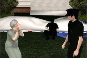 В сад 94-летней американки рухнул огромный дирижабль