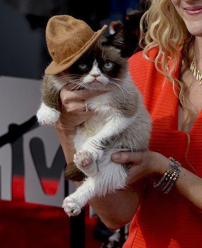 Грампи Кэт, угрюмая кошка
