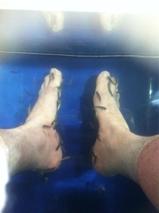 Звездные ноги Филиппа Киркорова