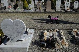 Во Франции из могилы пуделя похитили бриллиантовый ошейник