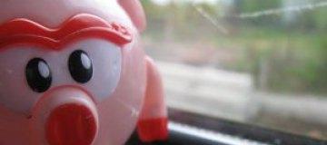 Житель Норильска обнаружил в подъезде свинью
